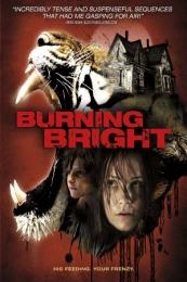 Nonton Film Burning Bright (2010) Subtitle Indonesia Streaming Movie Download